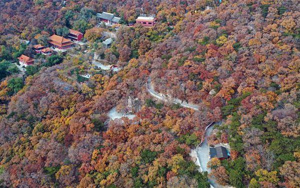 Herbstlich verfärbter Panshan-Berg in Tianjin