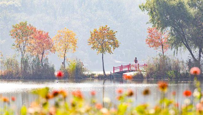 Herbstlandschaft in Chinas Nanjing