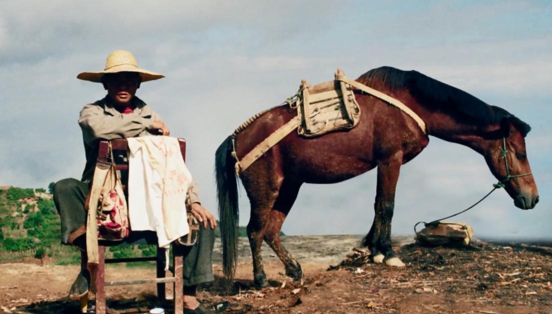 Album von China: Die lange Tee-Pferde-Straße
