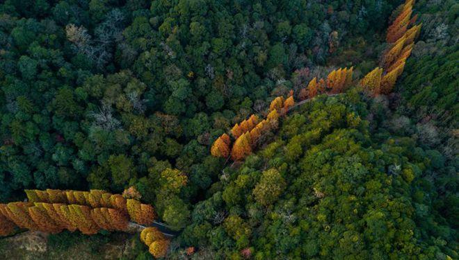 In Bildern: Nationales Naturschutzgebiet Longqi-Berg