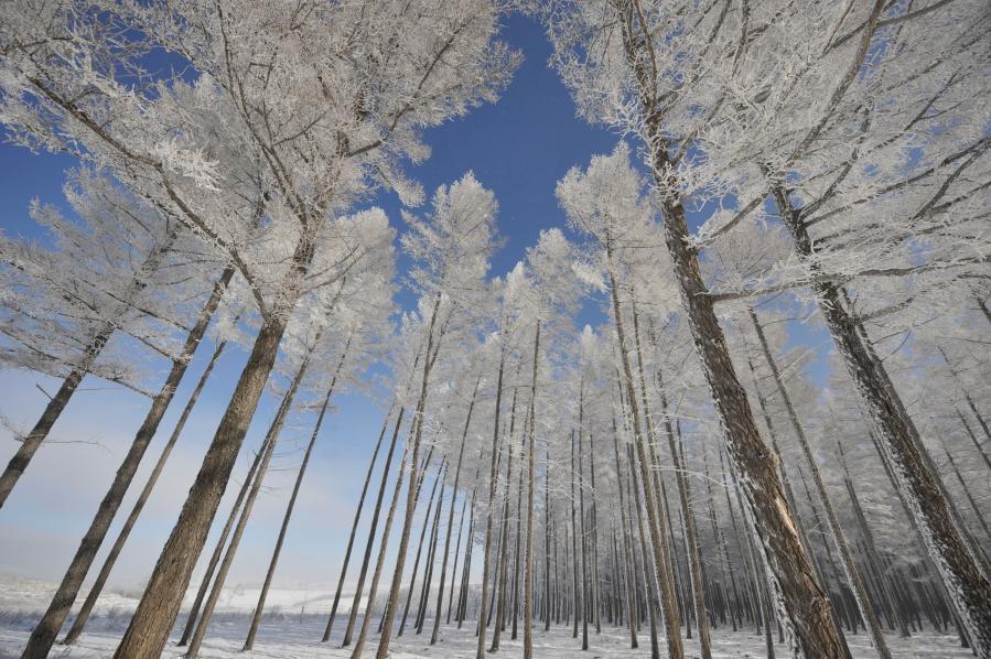 Winterlandschaft der Yudaokou-Weide in der Stadt Chengde