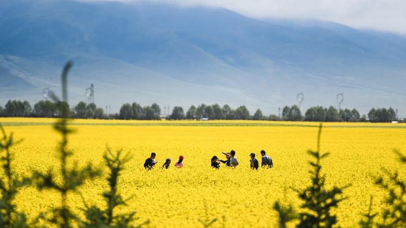 Qinghai empfängt von Januar bis November über 32 Millionen Touristen