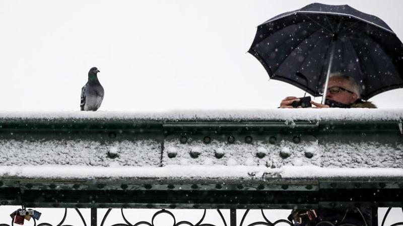 In Bildern: Schneefall in Frankfurt