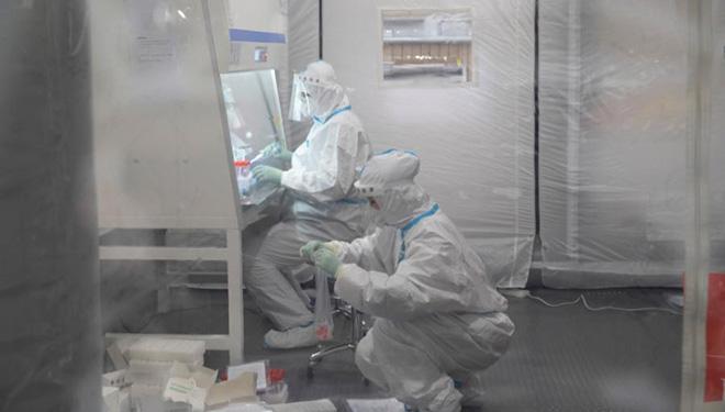 Heilongjiang meldet 12 neue bestätigte COVID-19-Fälle und 19 asymptomatische Infektionen