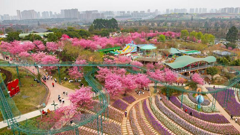 Menschen genießen Zeit in Blüten in ganz China