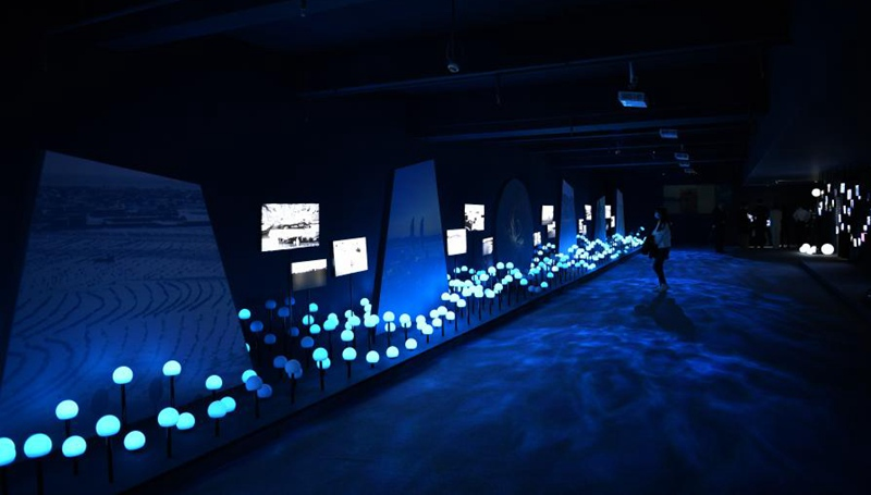 Kunstausstellung über Entwicklung des ökologischen Raums in Hainan eröffnet