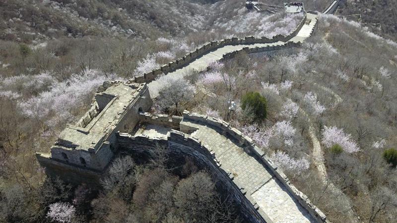 Frühlingslandschaft des Mutianyu-Abschnitts der Großen Mauer in Beijing
