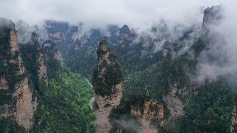Schöne Landschaften im Nationalen Waldpark Zhangjiajie
